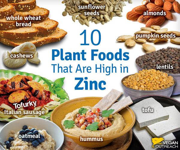 Tips for New Vegans – Vegan Health